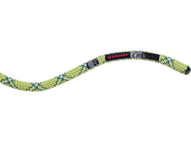 Mammut 9.5 Infinity Protect Rope 50m yellow-emerald
